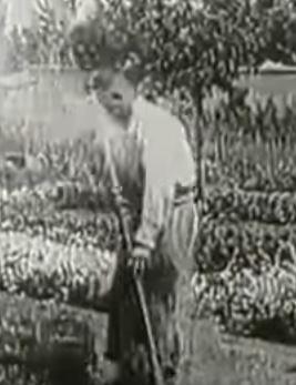 L'URSSAF d'Ile-de-France pratique le travail dissimulé à grande échelle …